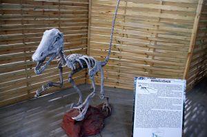 Le Musée Ephémère: la plus belle collection de dinosaures robotisés en tournée sur les routes de France